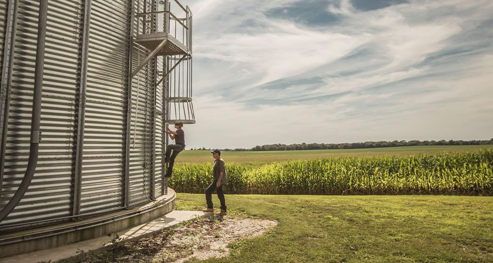 father and son climbing a ladder to a grain bin