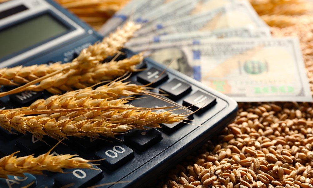 How are ag accounting and business accounting different?