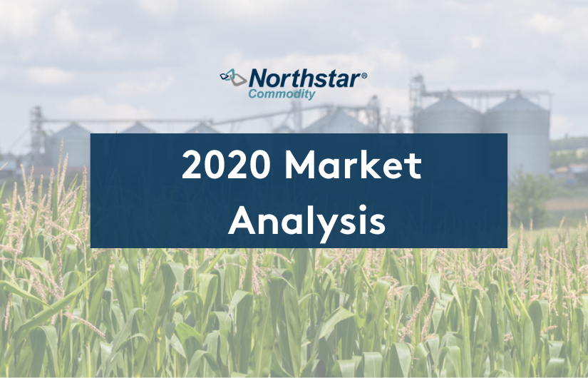 2020 Market Analysis: Northstar Commodity Shares Latest Market Updates
