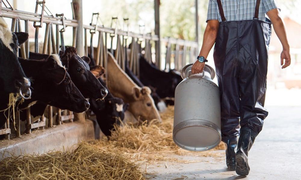 Is your farm profitable? Master these four metrics